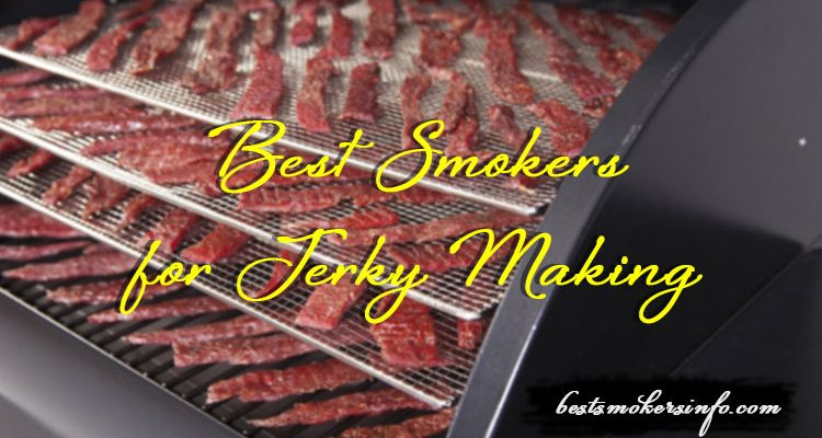 Best Smokers for Jerky Making