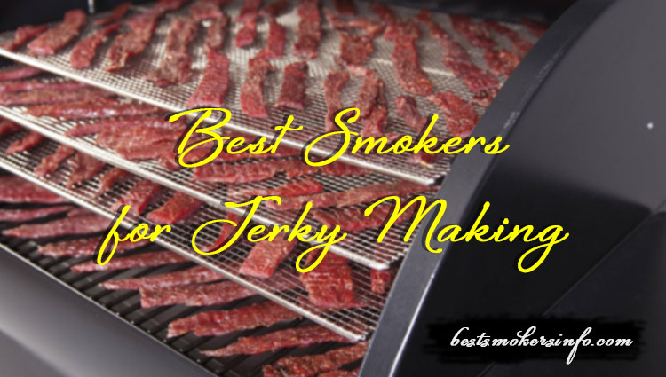 Best Smokers For Jerky Making And How To Make Jerky In A