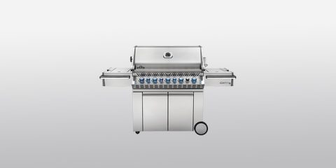 Napoleon Charcoal Grills Reviews