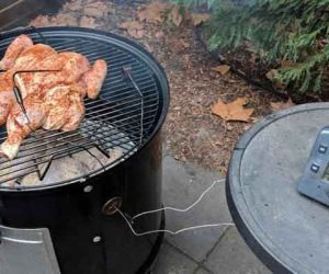 chicken hot fast weber smokey moutain